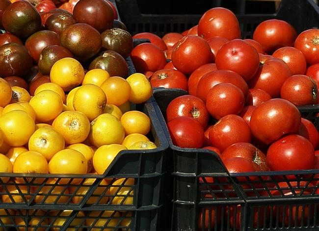 tomatoes-502603_1280